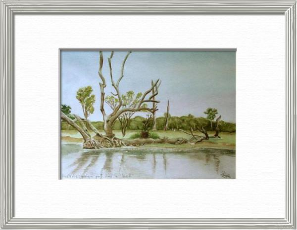 Elsewhere into the Bush, Northern Territory - Australia, Australia - World landscapes - , original framed watercolour, world travel diary, world watercolour