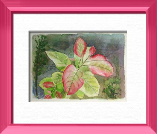 Red leaves, Plants, flowers, nature - , original framed watercolour, world travel diary, world watercolour