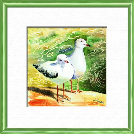 A couple of Seagulls on waterside, South Australia , Birds - , original framed watercolour, world travel diary, world watercolour