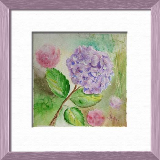 Mauve hydrangea from my garden, Plants, flowers, nature - , original framed watercolour, world travel diary, world watercolour