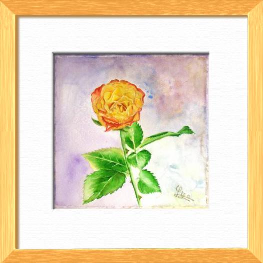 An orange rose quite simple, Plants, flowers, nature - , original framed watercolour, world travel diary, world watercolour