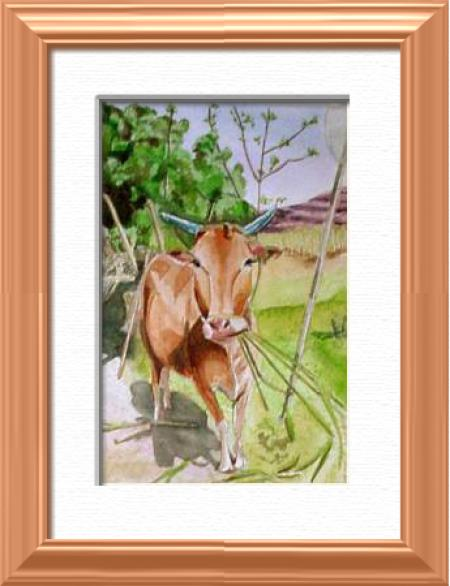 A sacred cow, Goa - India, Asia - Insects - , original framed watercolour, world travel diary, world watercolour